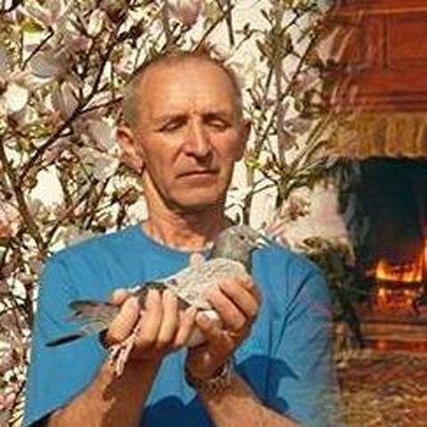 Miklós, 70 éves társkereső férfi - Nyíregyháza