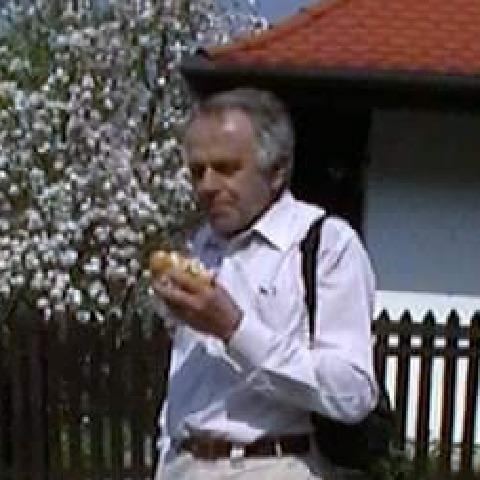 Gyula, 72 éves társkereső férfi - Markaz
