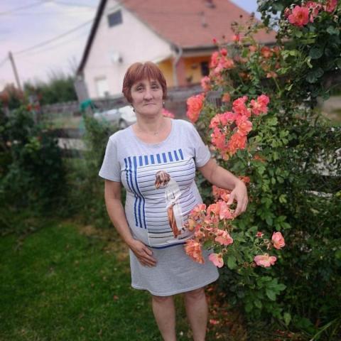 Erzsébet, 56 éves társkereső nő - Mezőcsát