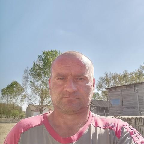 Attila, 43 éves társkereső férfi - Újléta