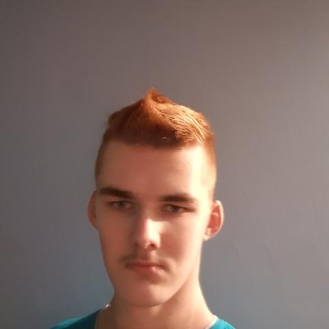 Misi, 18 éves társkereső férfi - Kamut