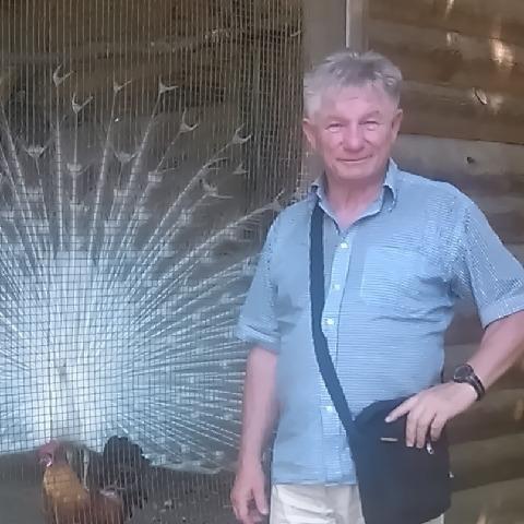József, 66 éves társkereső férfi - Nyíregyháza
