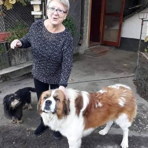 Eva, 52 éves társkereső nő - Nagyvarad