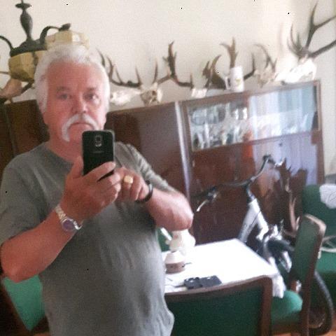bela, 65 éves társkereső férfi - Salgótarján