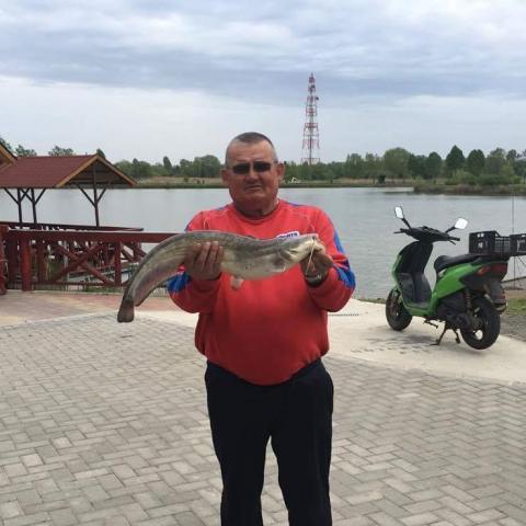 Janos, 64 éves társkereső férfi - Szakoly