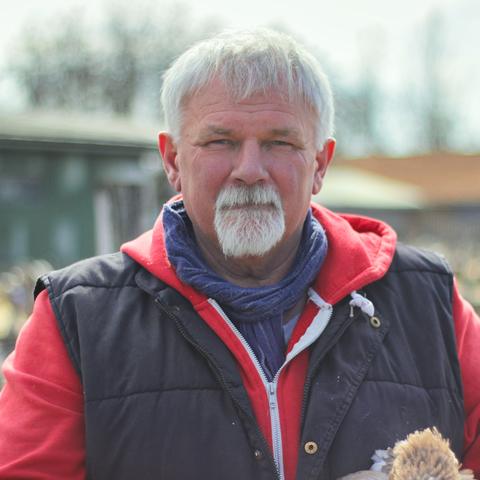István, 60 éves társkereső férfi - Tarhos