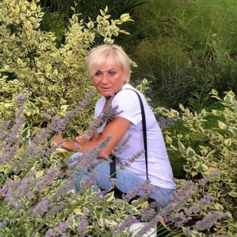 Ibolya, 52 éves társkereső nő - Miskolc