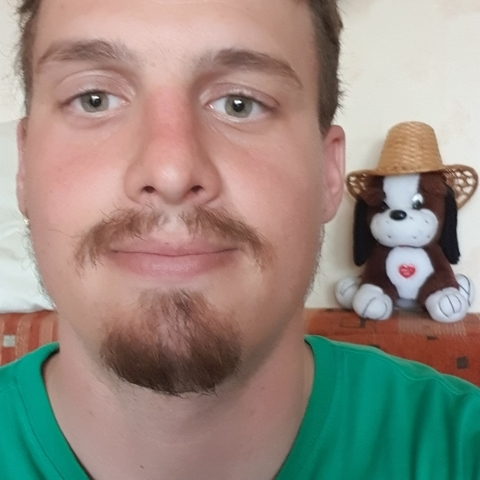 Norbert, 29 éves társkereső férfi - Keszthely
