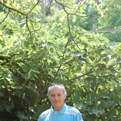 Ferenc, 68 éves társkereső férfi - Győr