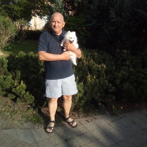 István, 60 éves társkereső férfi - Gyöngyös