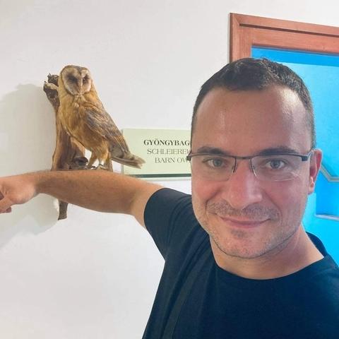 Róbert, 36 éves társkereső férfi - Nyíregyháza