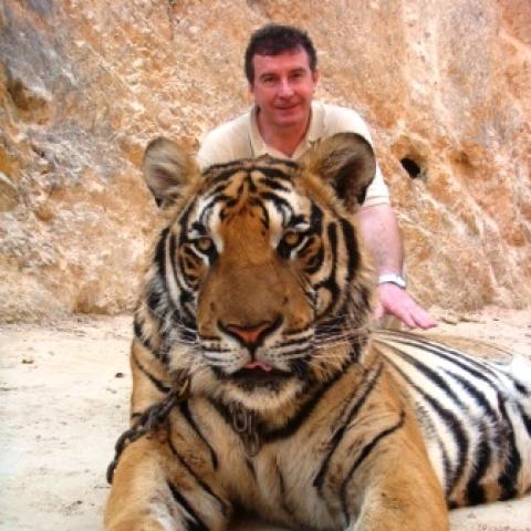 Laci, 63 éves társkereső férfi - Harkány