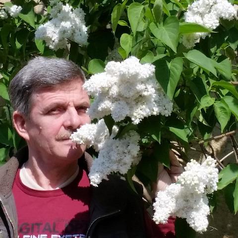Zsolt, 64 éves társkereső férfi - Gyöngyös