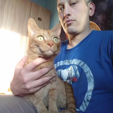 Jancsi, 37 éves társkereső férfi - Szentendre