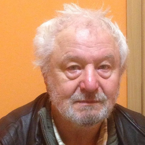 Kálmán, 66 éves társkereső férfi - Nagykanizsa