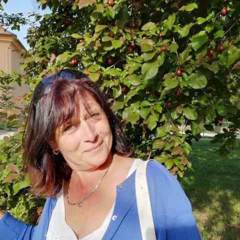 Vica, 53 éves társkereső nő - Pincehely
