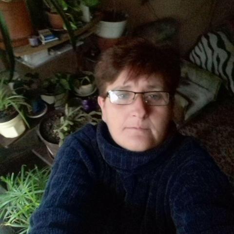 Mária, 53 éves társkereső nő - Polgárdi