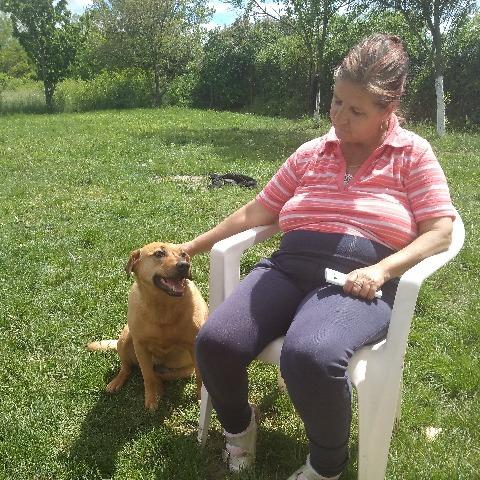 Marcsika, 58 éves társkereső nő - Sárszentmihály