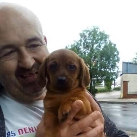 Tibor Sándor, 55 éves társkereső férfi - Székesfehérvár