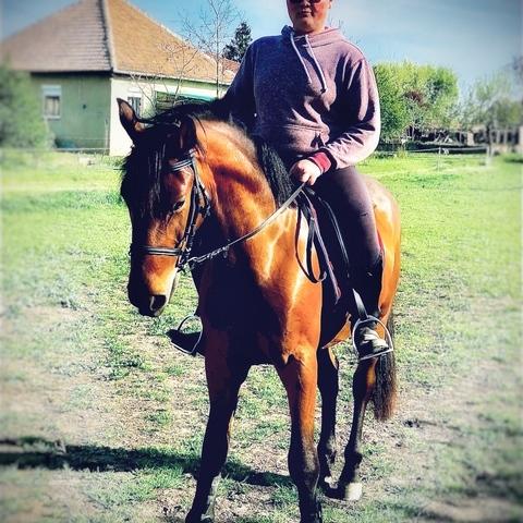 Kristóf, 18 éves társkereső férfi - Cibakháza